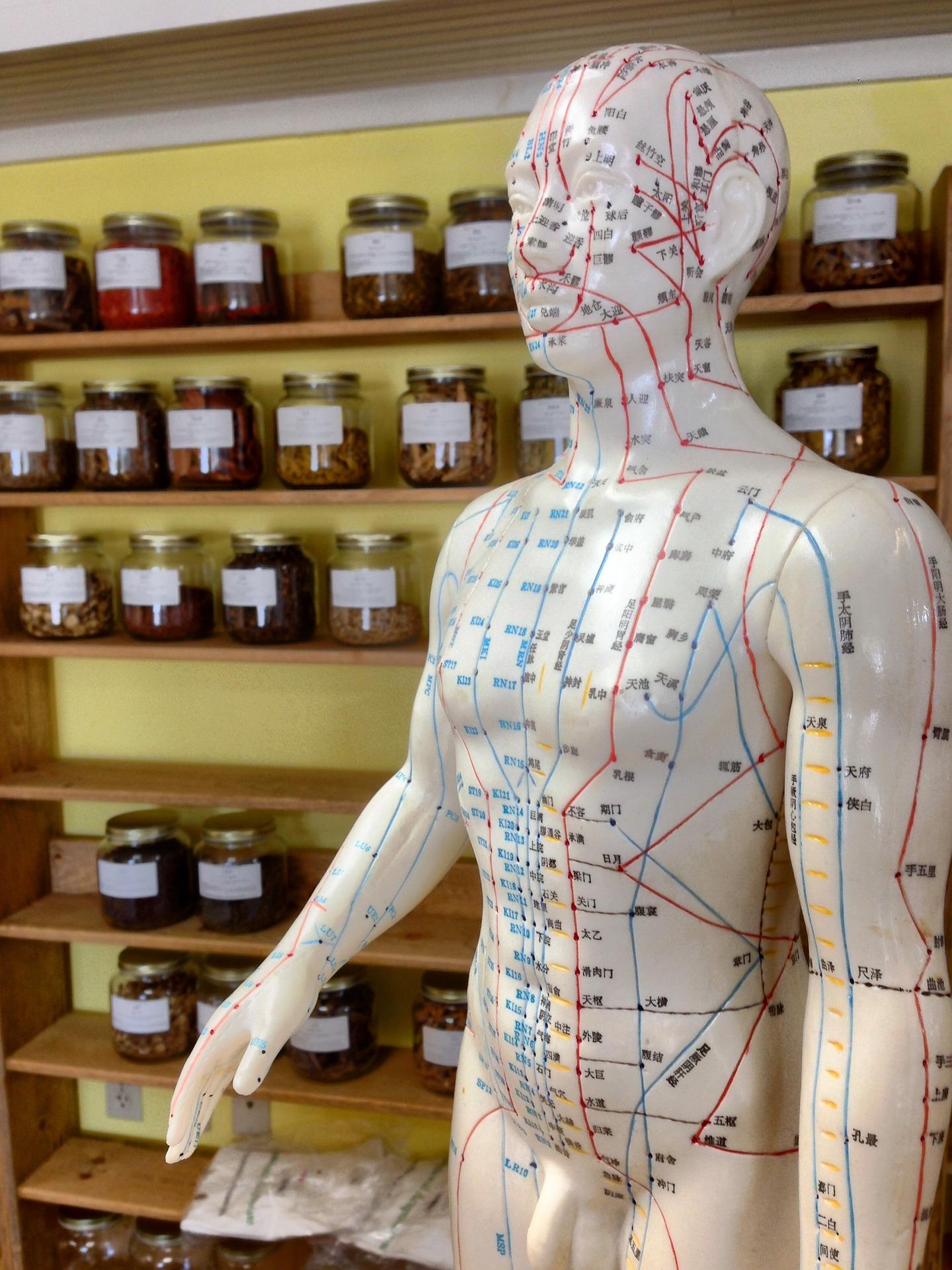acupuncture-2308489_1920